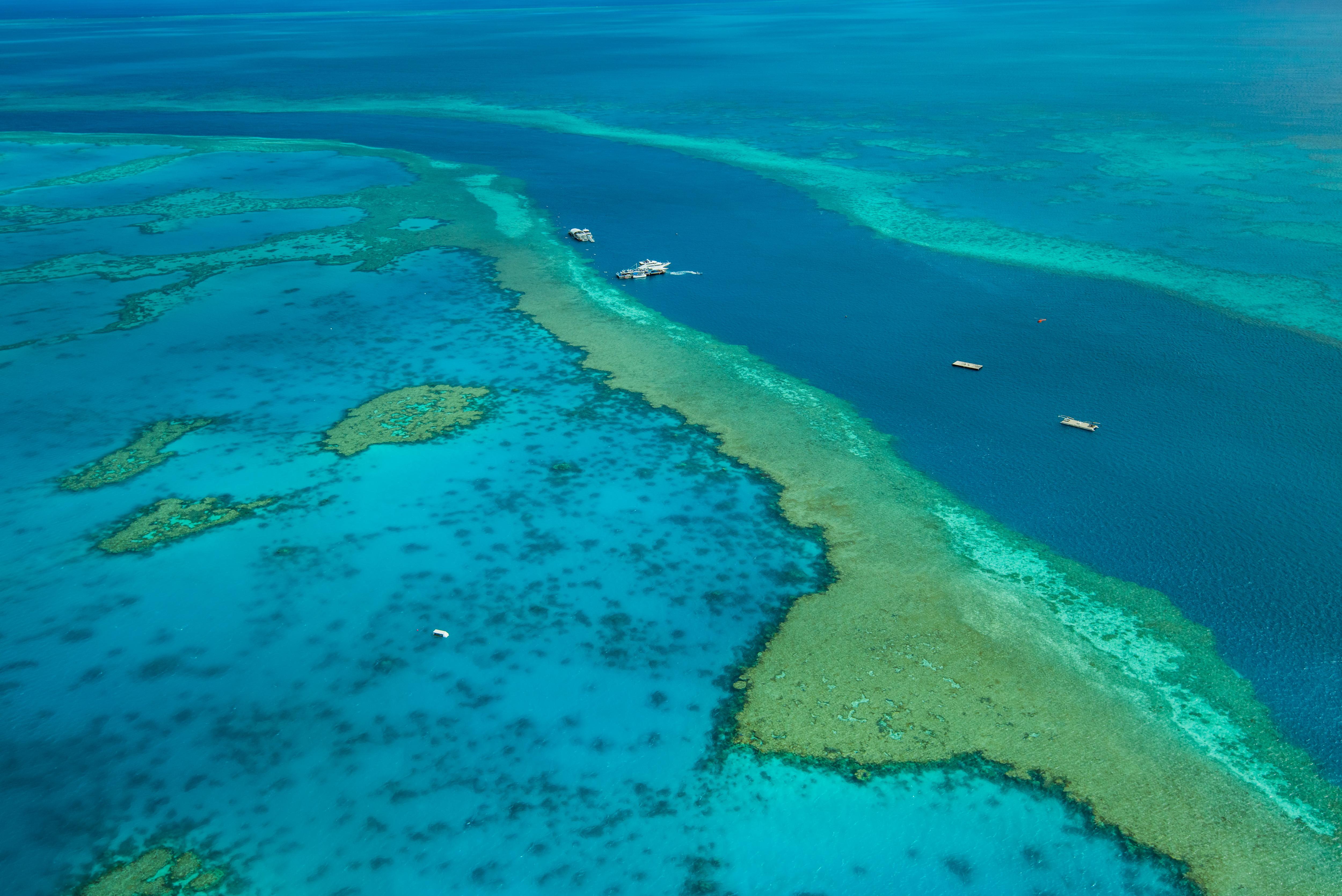 大堡礁  Great Barrier Reef   -0