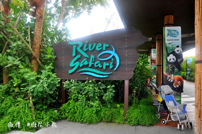 图/文维尼小熊 动物园,无疑是孩子们最感兴趣的乐园! 我曾带小熊到过许多不同城市的动物园,光广州香江野生动物园都不止去过一次。而印像最深还是到深圳那次,小小年纪的他敢试蠎蛇盘肩,如今回想我都心有余悸。所以此次去新加坡,当看到行程中有动物园时,老实说我并无特别的惊喜,因为听人说新加坡动物园要比广州香江小很多,这让我心里有些打鼓,不过还有人说新加坡动物园胜在动物与人和谐共处的管理方式,这点倒让我们很是期待。 有时不得不承认耳闻不如一见这词,来到这里才知,Singapore Zoo动物园位于新加坡北部的万里湖