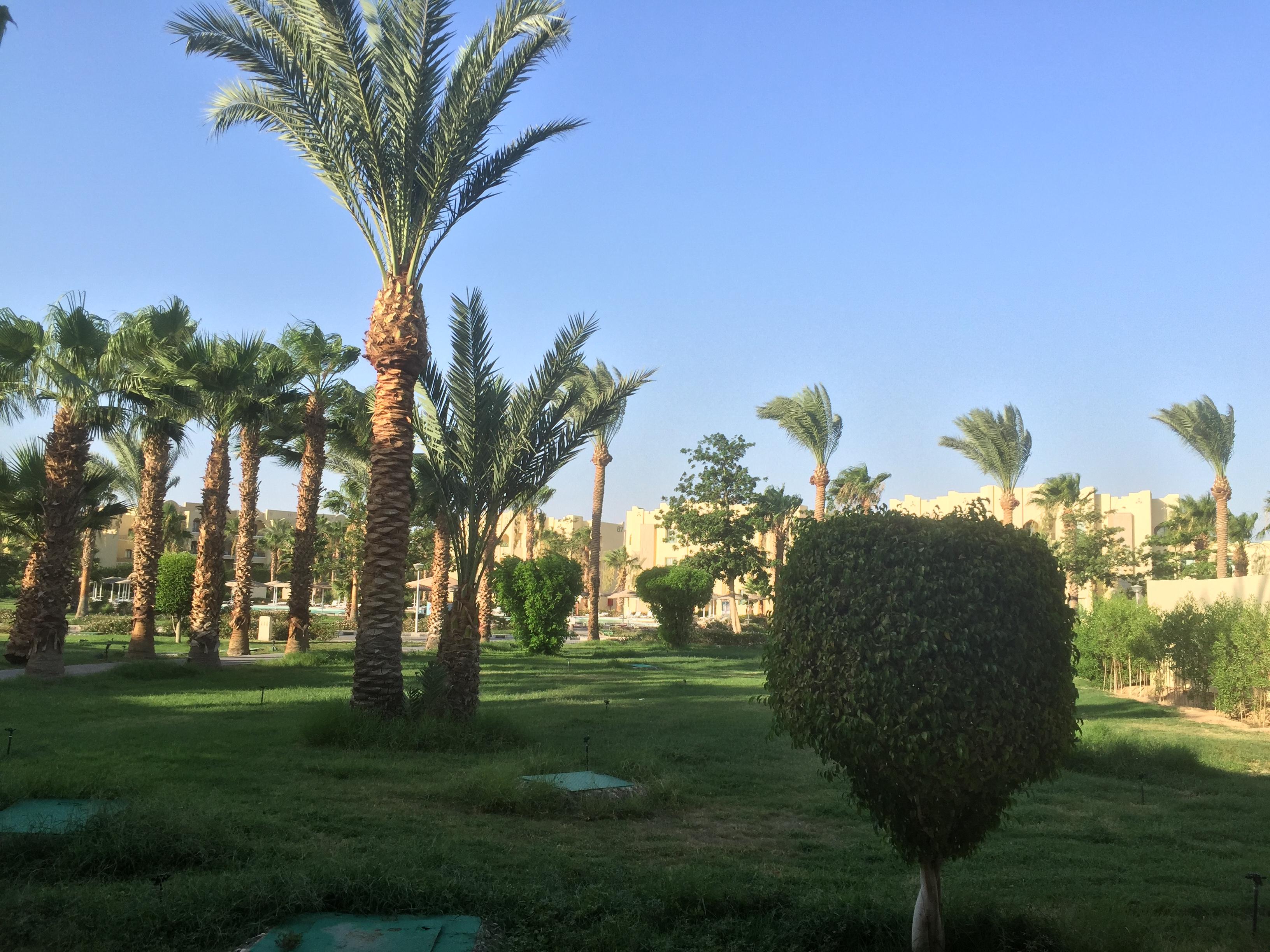 紅海度假村  Red Sea Resort   -0