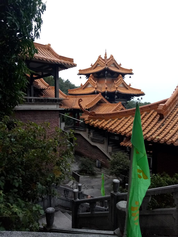 宁阳县鹤山镇孔庙村