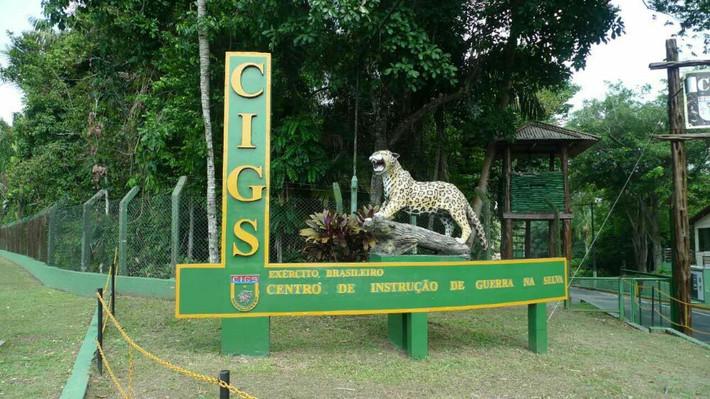 南美自助游一马瑙斯市中心及动物园,植物园游