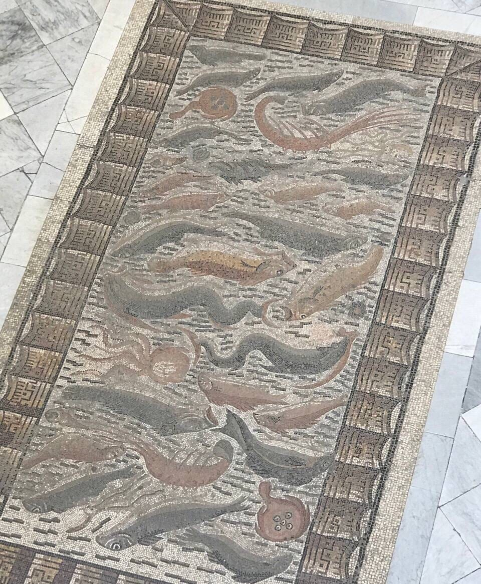 巴尔多博物馆  Bardo National Museum of Prehistory and Ethnography   -1