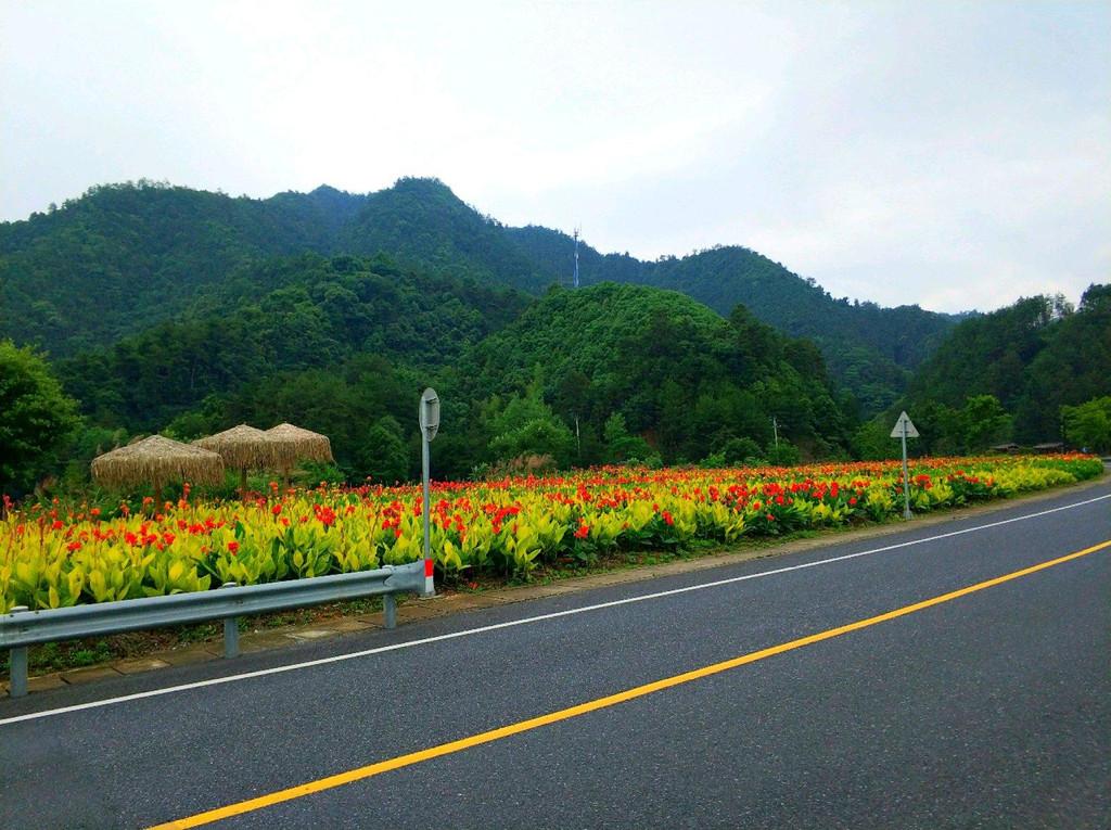 千岛湖环湖骑行june,2017