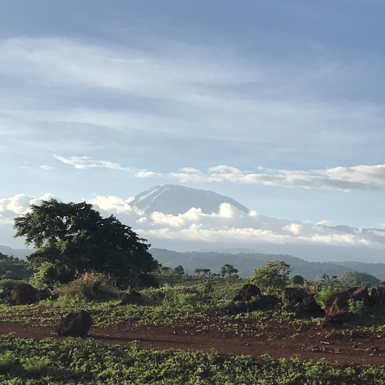 Mount Kilimanjaro  Mount Kilimanjaro   -4