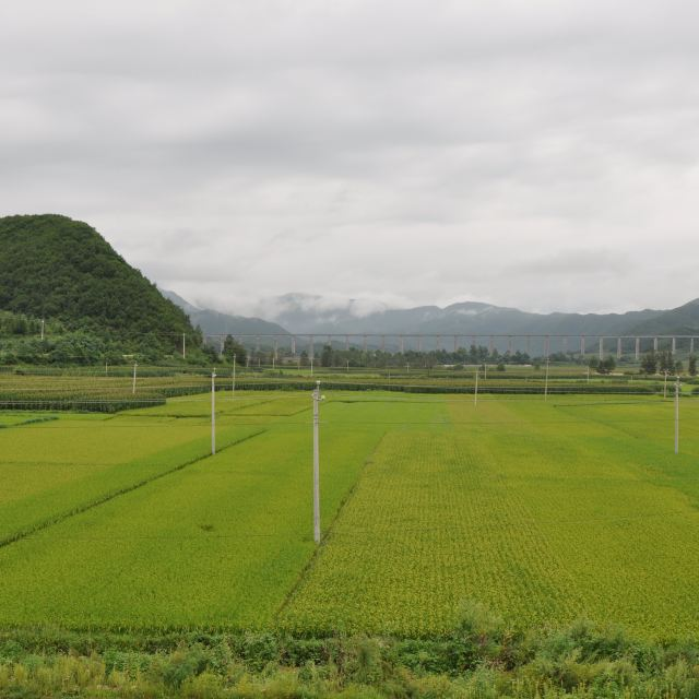 鹤大高速沿途景色