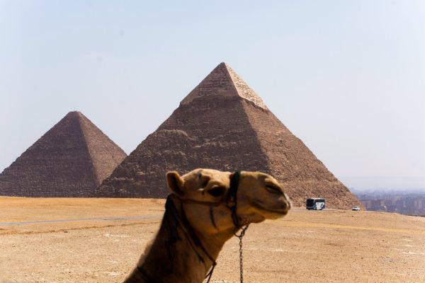 金字塔电影_《开罗宣言》,电影《尼罗河惨案》,金字塔让我对埃及充满神秘感,迫不