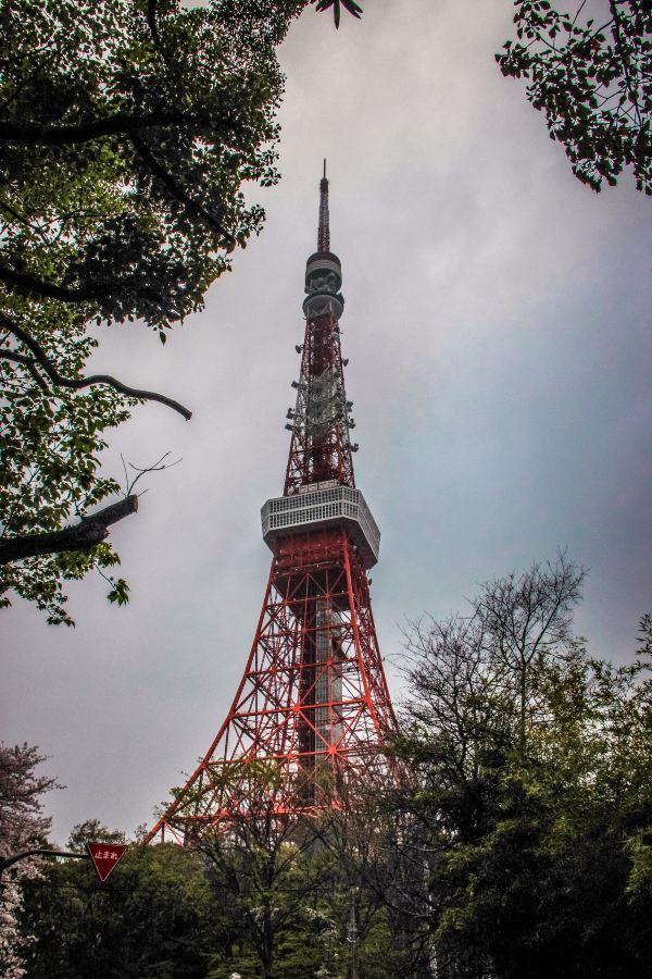 我们就来到了东京塔
