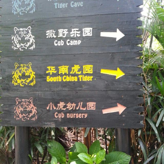 第二天,长隆野生动物园.