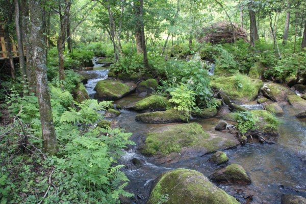 现已成立 威虎山国家森林公园 ,佛手山国家森林公园 ,威虎山 风景区和