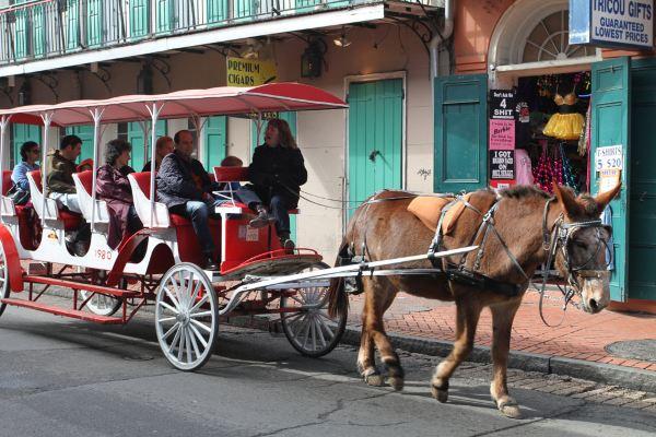 街道上保留这18世纪的马车