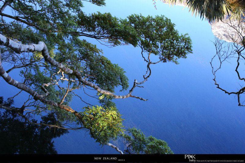 新西兰镜湖,大山深处的绝美风光