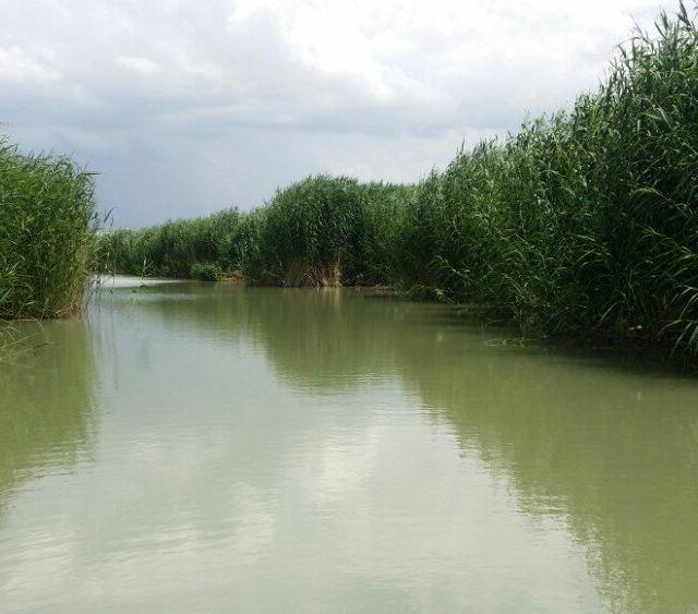 45天西部五省自助游第十四天:新疆博斯腾湖景区:莲花湖和阿洪口