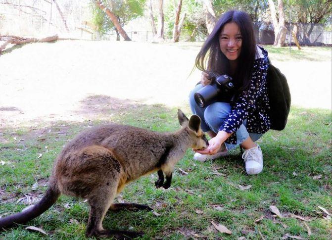 随手拍#【澳大利亚】走进神秘的野生动物世界