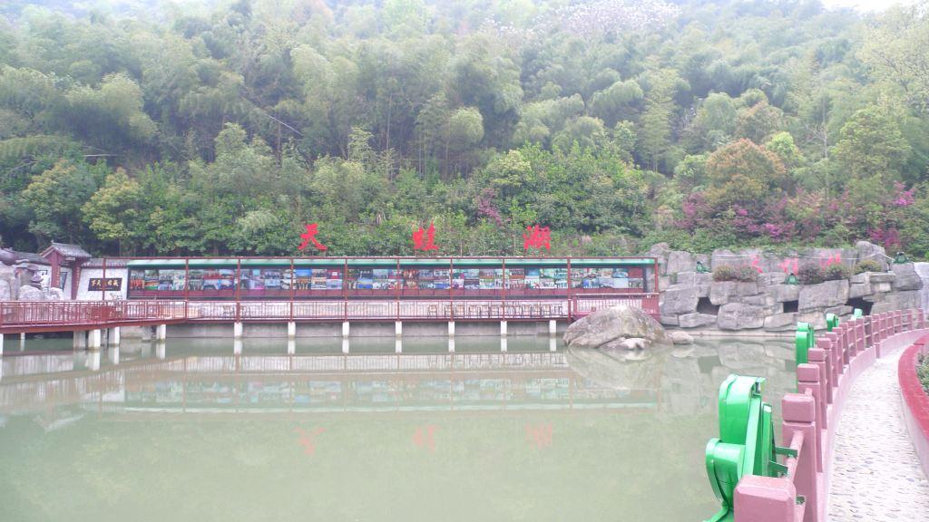 随手拍# 游鲤龙潭国家森林公园