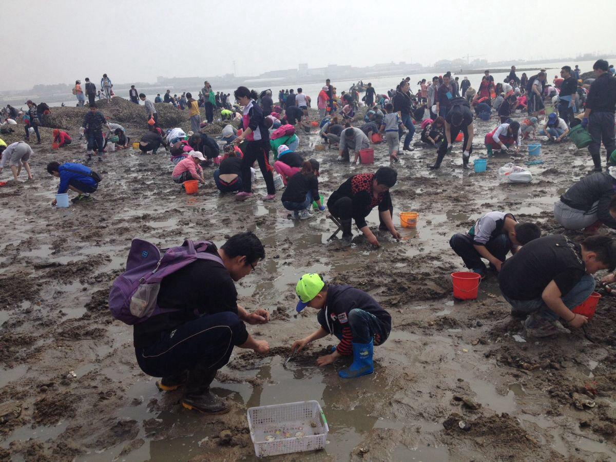 红岛蛤蜊节,挖嘎啦 - 游记攻略【携程攻略】