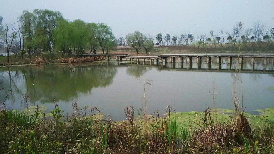 江浦滨江公园_南京浦口滨江公园江边