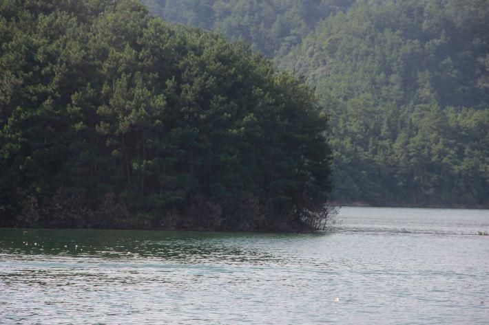 张小姐带你吃喝玩乐【攻略千岛湖,实用自驾】东京麻布十秘籍图片