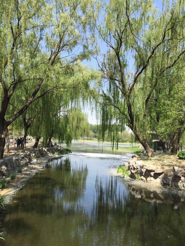 北京圆明园半日游
