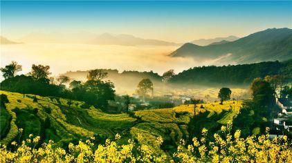...的上海.它在田野里在村落中在溪水边在淳朴乡民的笑脸间......