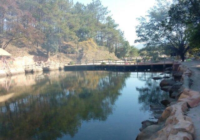 第1天2015-03-05 牛鱼嘴原始生态风景区是一个原始的野生植物园,禾雀