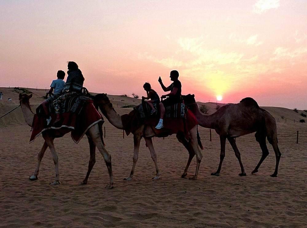沙漠探险  Desert Safaris   -0