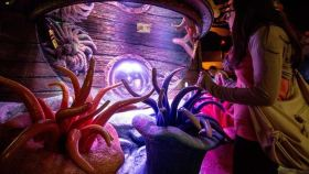 海洋生命水族馆