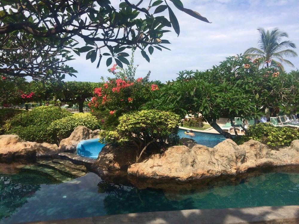 巴厘岛,新加坡一次玩个够
