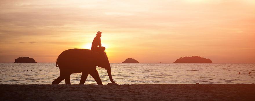 象岛旅游攻略指南? 携程攻略社区! 靠谱的旅游攻略平台,最佳的象岛自助游、自由行、自驾游、跟团旅线路,海量象岛旅游景点图片、游记、交通、美食、购物、住宿、娱乐、行程、指南等旅游攻略信息,了解更多象岛旅游信息就来携程旅游攻略。