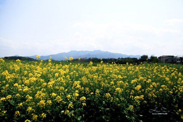 五峰铺镇,是一座有六百多年历史的古老小镇 小镇位于湖南省的中部的