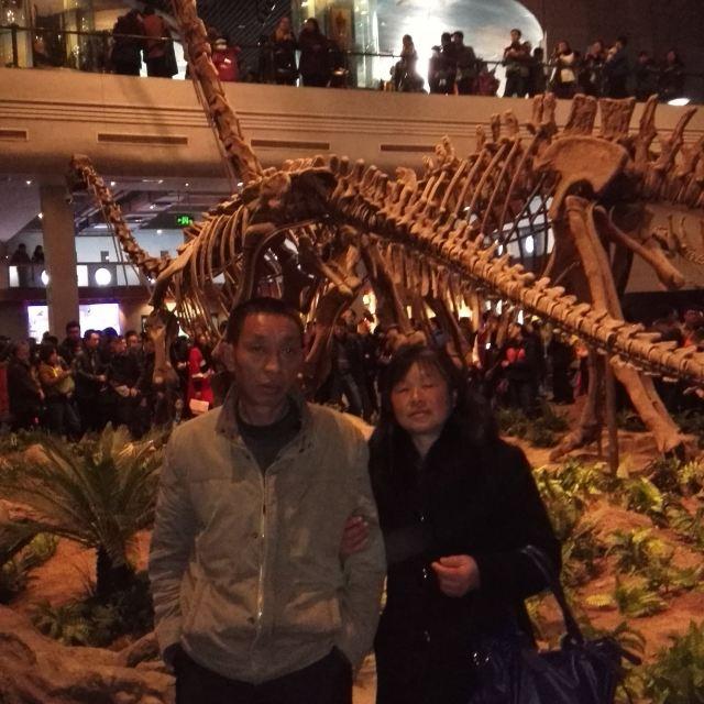 加游站#自贡灯,游记博物馆,乐山大佛春节攻略幽冥恐龙单刷古堡