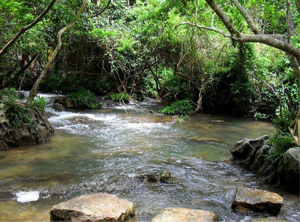 夏天来到小七孔,这里无疑是戏水纳凉的好地方,延绵不绝的溪水,满眼尽图片