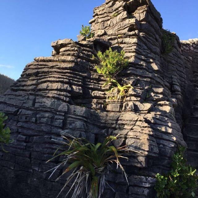 大自然的鬼斧神工,新西兰千层饼岩