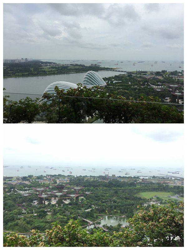 【亲子游】5天悠游新加坡 - 新加坡游记攻略【携程攻略】