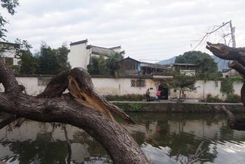 攻略牯牛的自驾游~~杭州上海塔川宏村女人降跳大绳两个图片