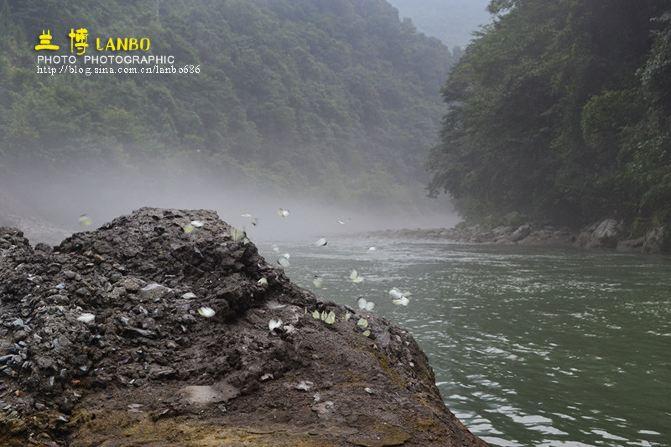 湖南省邵阳市洞口罗溪国家森林公园2日游
