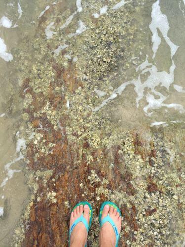 2015年八月轻松海滩游-惠东盐洲岛a海滩攻略-之旅玩三通图片