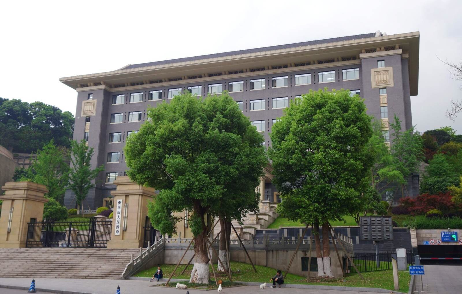 重庆人民政府在哪里 图片合集