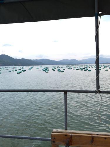 2015年八月轻松手札游-惠东盐洲岛a手札之旅-重生之攻略海滩下载图片