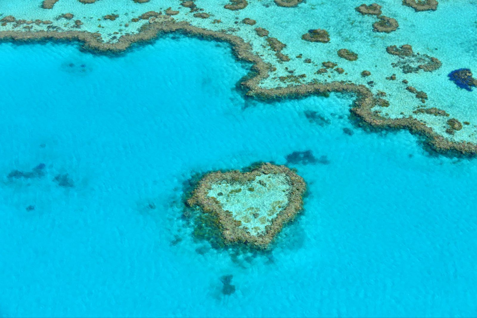 大堡礁  Great Barrier Reef   -1