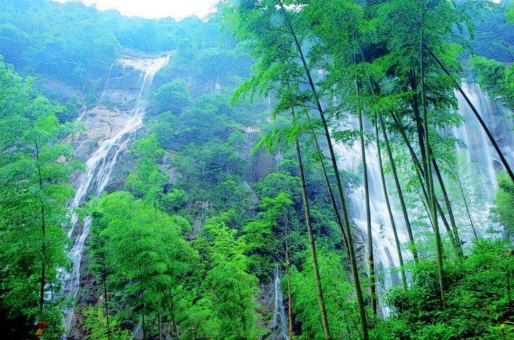 写意金秋# 竹林深处的千泷沟瀑布
