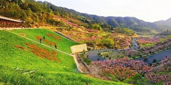 岷县蒲麻红崖地图