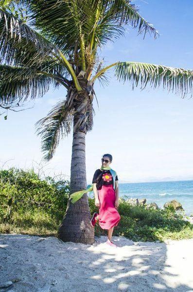 大海椰树矢量图