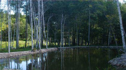 亚布力国际会展中心1晚 锅盔山休闲景区门票 森林氧吧养生度假
