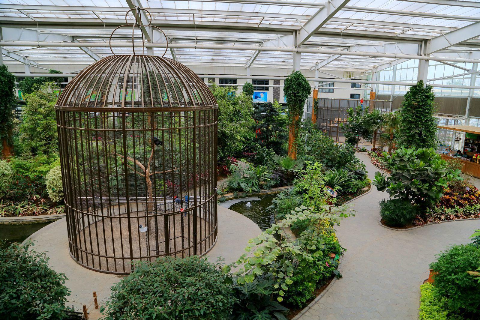 南宫五洲植物乐园——北京版热带雨林