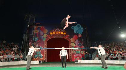 就在上海野生动物园,一场原滋原味的俄罗斯大马戏全新震撼上演,惊,奇