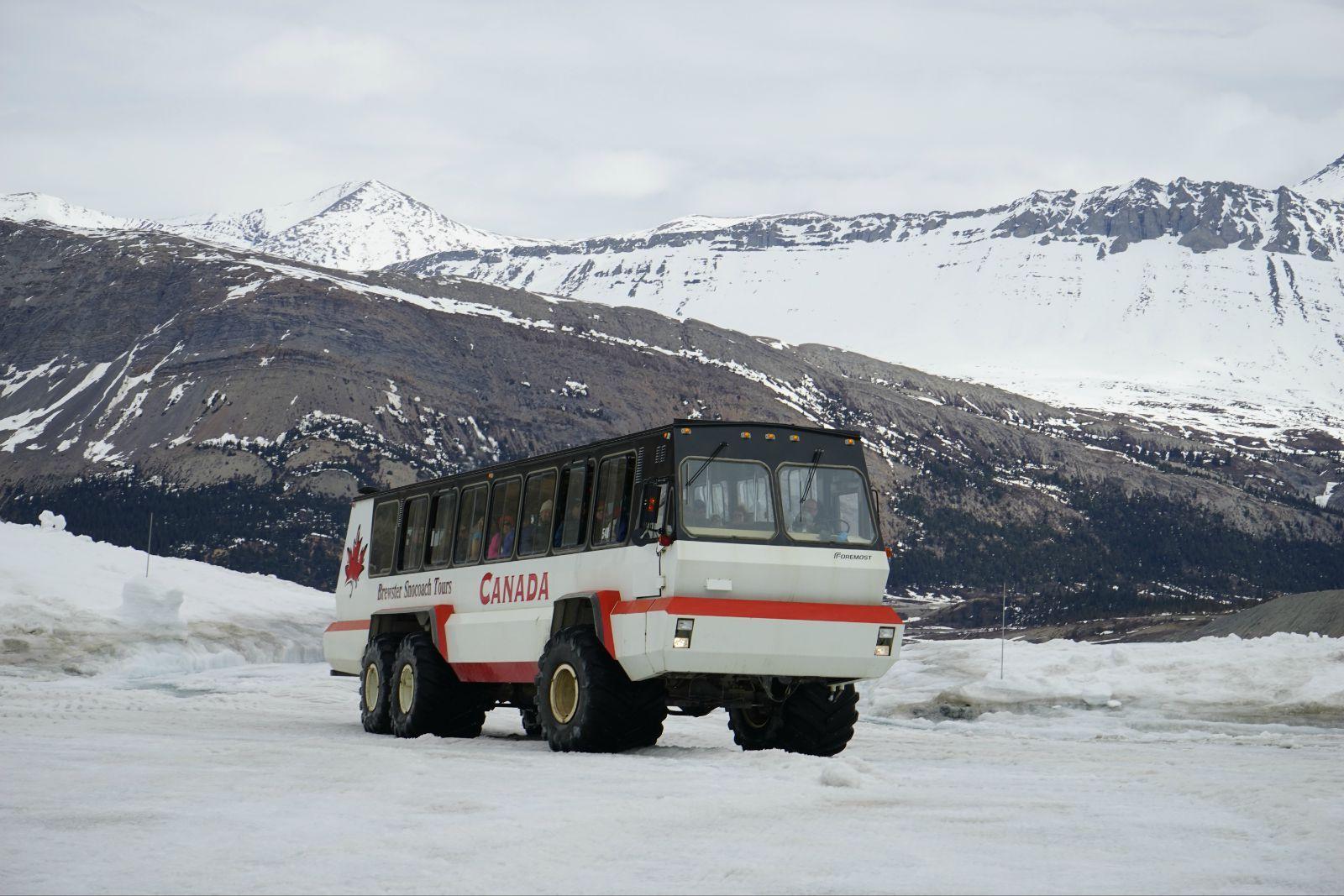 加拿大洛基山冰雪之旅图片