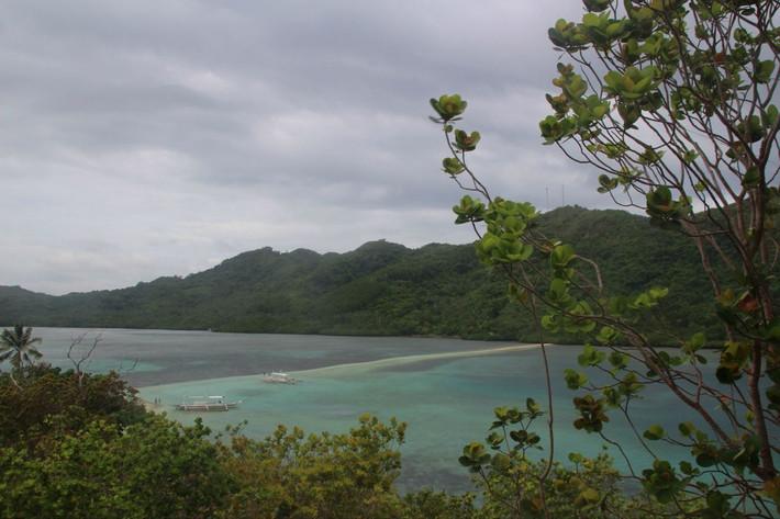 中国第一大蛇岛
