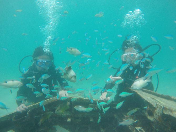梦幻海岛潜水游--帕劳