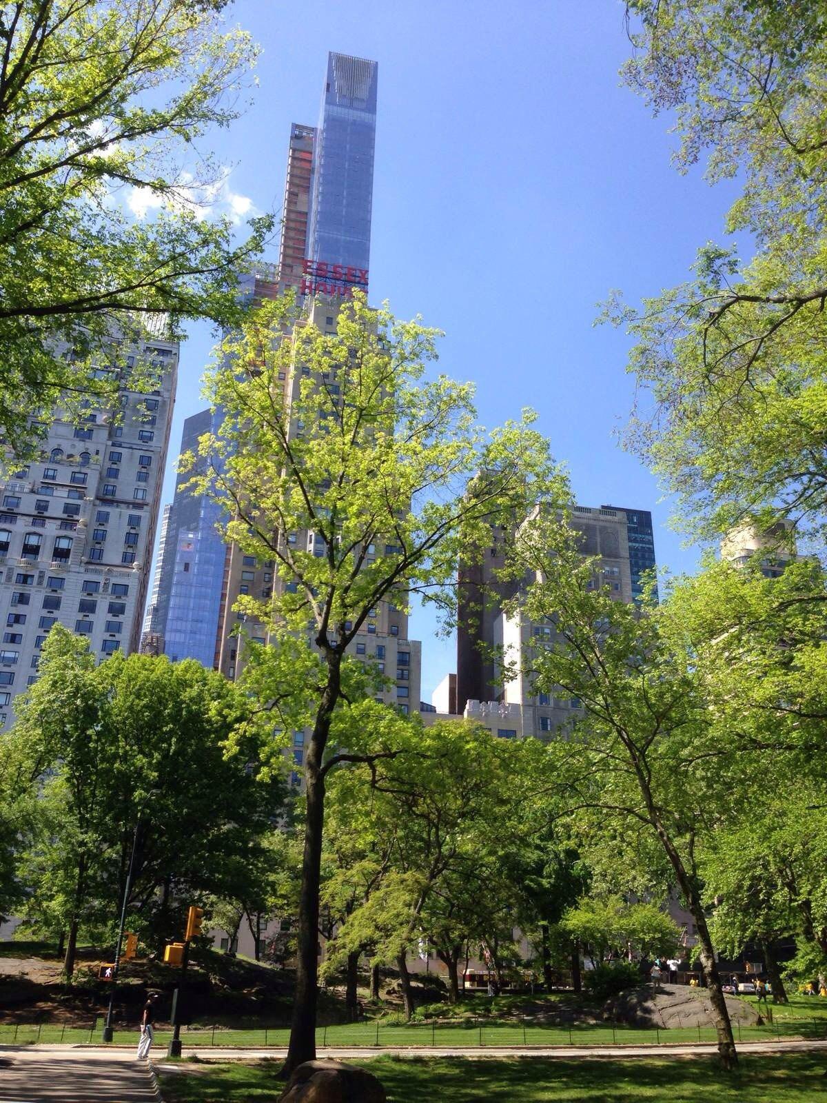 纽约华盛顿dc自助游-纽约攻略游记【携程攻略】港澳游v攻略攻略图片