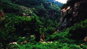 房干生态景区